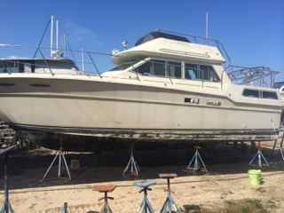 Restoring Searay with Marine 31 products